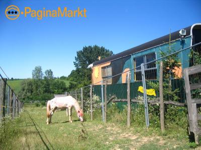 Hongarije:met je paard op vakantie?