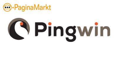 Pingwin.nl webdesign
