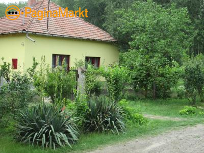 Te huur vakantiewoning te Tiszakecske Hongarije